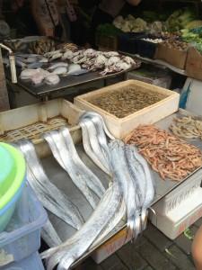 Shanghai Eels and Shrimp