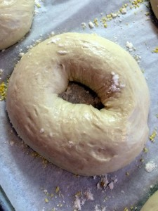 Formed Bagel Dough (2)