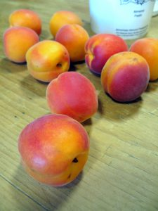Ripe summer apricots ready for baking