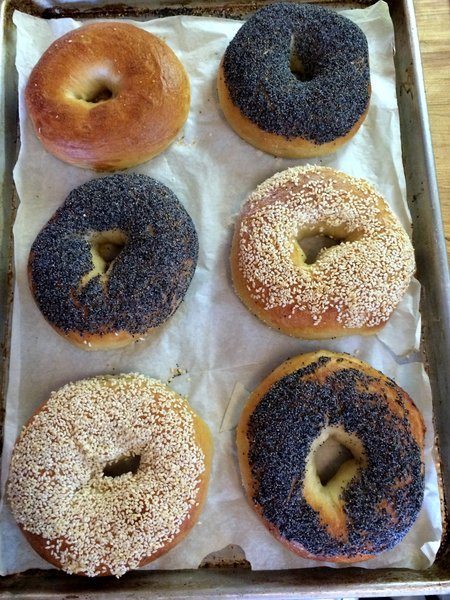 New York Chewy Bagels Food Processor Mixing Method