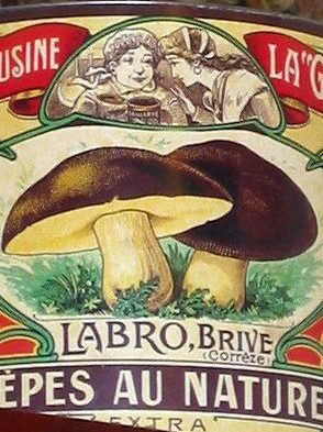 Tinned Imported Wild Mushrooms 2