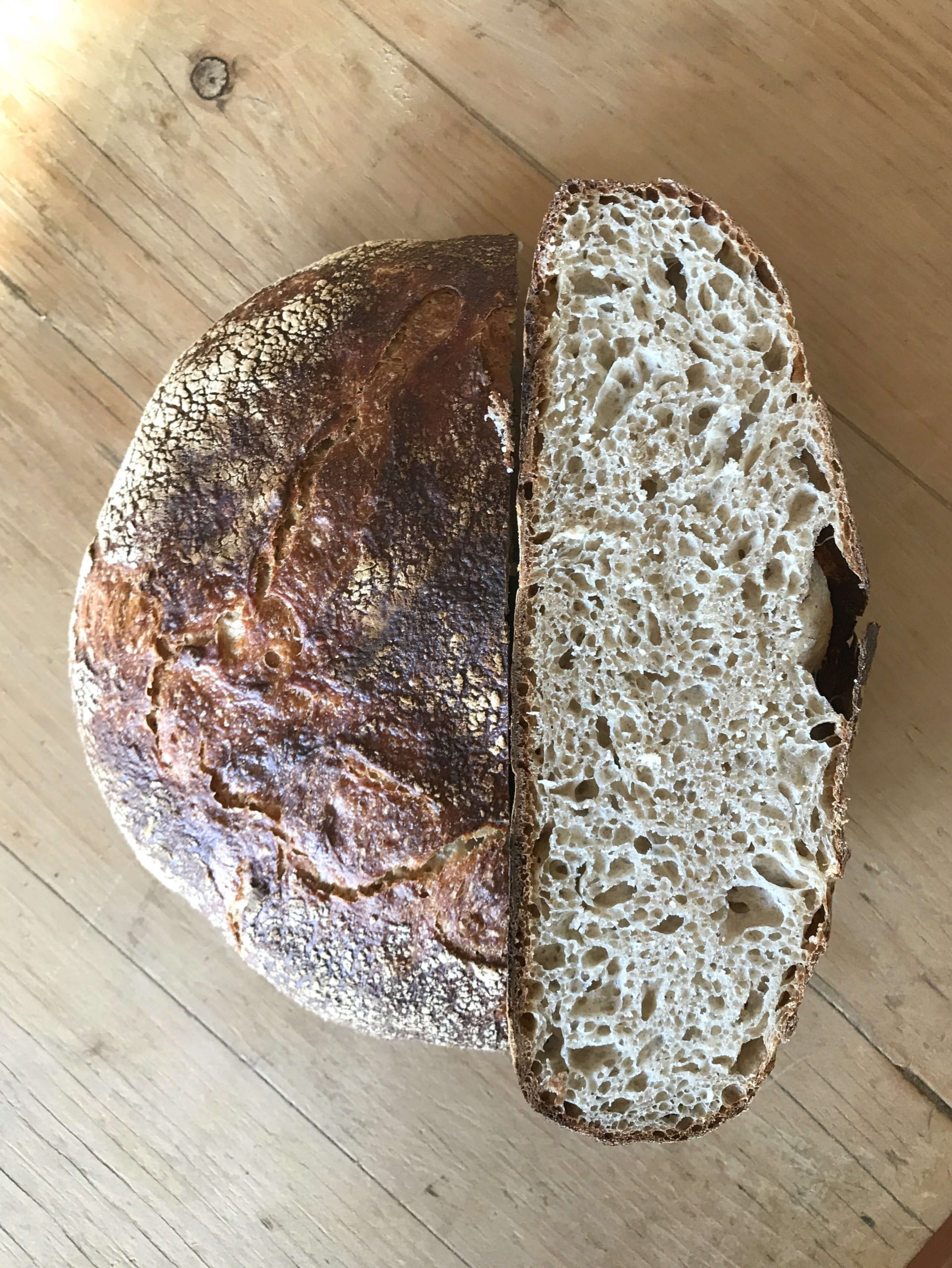 Experimental No Knead Bread
